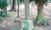 Randonnée Marche LIFFRE - La Fontaine de Saint-Raoul - Liffré - Photo 3