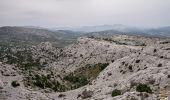 Randonnée Marche MARSEILLE - Le Mont Puget 563m, par le Vallon de l'Herbe et le Vallon Mestrallet - Photo 1