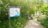 Randonnée Marche CAMBRIN - Marais de Cambrin - Photo 6