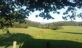 Trail Walk CHAMBERET - Puy Saumon - Chamberet - Photo 1