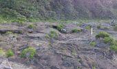 Randonnée Marche SAINTE-ROSE - La Réunion - Le Piton de la Fournaise depuis le Pas de Bellecombe - Photo 13