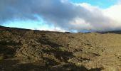 Randonnée Marche SAINTE-ROSE - La Réunion - Le Piton de la Fournaise depuis le Pas de Bellecombe - Photo 10