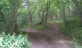 Trail Walk CHATEL-GUYON - Boucle de Rochepradière en passant par Douhady - Photo 9
