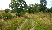 Trail Walk CHATEL-GUYON - Boucle de Rochepradière en passant par Douhady - Photo 6