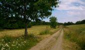 Trail Walk CHATEL-GUYON - Boucle de Rochepradière en passant par Douhady - Photo 4