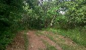 Trail Walk CHATEL-GUYON - Boucle de Rochepradière en passant par Douhady - Photo 2