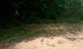 Trail Walk CHATEL-GUYON - Boucle de Rochepradière en passant par Douhady - Photo 1