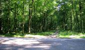 Randonnée Marche LONGPONT - en forêt de Retz_25_Longpont_MF du Buchet_AR - Photo 23