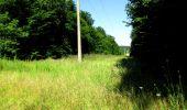 Randonnée Marche LONGPONT - en forêt de Retz_25_Longpont_MF du Buchet_AR - Photo 73