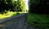 Randonnée Marche LONGPONT - en forêt de Retz_25_Longpont_MF du Buchet_AR - Photo 5