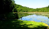 Randonnée Marche LONGPONT - en forêt de Retz_25_Longpont_MF du Buchet_AR - Photo 90