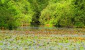 Randonnée Marche LONGPONT - en forêt de Retz_25_Longpont_MF du Buchet_AR - Photo 39