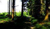 Randonnée Marche LONGPONT - en forêt de Retz_25_Longpont_MF du Buchet_AR - Photo 1