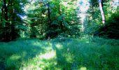 Randonnée Marche LONGPONT - en forêt de Retz_25_Longpont_MF du Buchet_AR - Photo 95