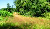 Randonnée Marche LONGPONT - en forêt de Retz_25_Longpont_MF du Buchet_AR - Photo 87