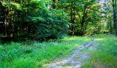 Randonnée Marche LONGPONT - en forêt de Retz_25_Longpont_MF du Buchet_AR - Photo 26