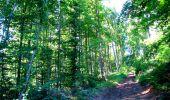 Randonnée Marche LONGPONT - en forêt de Retz_25_Longpont_MF du Buchet_AR - Photo 60