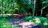 Randonnée Marche LONGPONT - en forêt de Retz_25_Longpont_MF du Buchet_AR - Photo 49