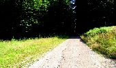 Randonnée Marche LONGPONT - en forêt de Retz_25_Longpont_MF du Buchet_AR - Photo 74