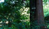 Randonnée Marche LONGPONT - en forêt de Retz_25_Longpont_MF du Buchet_AR - Photo 42