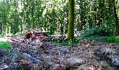 Randonnée Marche LONGPONT - en forêt de Retz_25_Longpont_MF du Buchet_AR - Photo 31