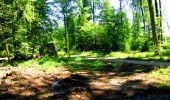 Randonnée Marche LONGPONT - en forêt de Retz_25_Longpont_MF du Buchet_AR - Photo 79