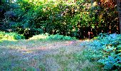 Randonnée Marche LONGPONT - en forêt de Retz_25_Longpont_MF du Buchet_AR - Photo 117