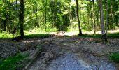 Randonnée Marche LONGPONT - en forêt de Retz_25_Longpont_MF du Buchet_AR - Photo 32