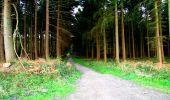 Randonnée Marche LONGPONT - en forêt de Retz_25_Longpont_MF du Buchet_AR - Photo 7