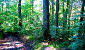 Randonnée Marche LONGPONT - en forêt de Retz_25_Longpont_MF du Buchet_AR - Photo 59