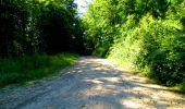 Randonnée Marche LONGPONT - en forêt de Retz_25_Longpont_MF du Buchet_AR - Photo 66