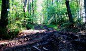 Randonnée Marche LONGPONT - en forêt de Retz_25_Longpont_MF du Buchet_AR - Photo 85
