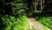 Randonnée Marche LONGPONT - en forêt de Retz_25_Longpont_MF du Buchet_AR - Photo 119