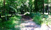 Randonnée Marche LONGPONT - en forêt de Retz_25_Longpont_MF du Buchet_AR - Photo 105