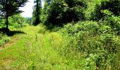 Randonnée Marche LONGPONT - en forêt de Retz_25_Longpont_MF du Buchet_AR - Photo 52