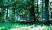 Randonnée Marche LONGPONT - en forêt de Retz_25_Longpont_MF du Buchet_AR - Photo 94