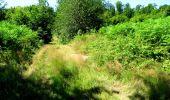 Randonnée Marche LONGPONT - en forêt de Retz_25_Longpont_MF du Buchet_AR - Photo 43