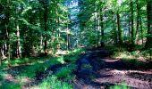 Randonnée Marche LONGPONT - en forêt de Retz_25_Longpont_MF du Buchet_AR - Photo 48