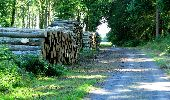 Randonnée Marche LONGPONT - en forêt de Retz_25_Longpont_MF du Buchet_AR - Photo 98