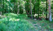 Randonnée Marche LONGPONT - en forêt de Retz_25_Longpont_MF du Buchet_AR - Photo 106