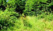 Randonnée Marche LONGPONT - en forêt de Retz_25_Longpont_MF du Buchet_AR - Photo 81