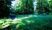 Randonnée Marche LONGPONT - en forêt de Retz_25_Longpont_MF du Buchet_AR - Photo 96