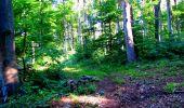 Randonnée Marche LONGPONT - en forêt de Retz_25_Longpont_MF du Buchet_AR - Photo 88