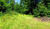 Randonnée Marche LONGPONT - en forêt de Retz_25_Longpont_MF du Buchet_AR - Photo 82