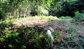 Randonnée Marche LONGPONT - en forêt de Retz_25_Longpont_MF du Buchet_AR - Photo 16