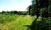 Randonnée Marche LONGPONT - en forêt de Retz_25_Longpont_MF du Buchet_AR - Photo 46