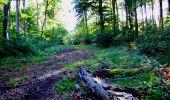 Randonnée Marche LONGPONT - en forêt de Retz_25_Longpont_MF du Buchet_AR - Photo 89