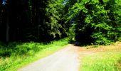Randonnée Marche LONGPONT - en forêt de Retz_25_Longpont_MF du Buchet_AR - Photo 126