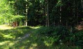 Randonnée Marche LONGPONT - en forêt de Retz_25_Longpont_MF du Buchet_AR - Photo 20