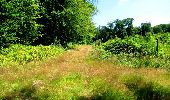 Randonnée Marche LONGPONT - en forêt de Retz_25_Longpont_MF du Buchet_AR - Photo 44